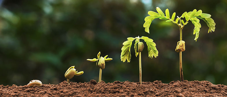 Insightful quotes on growing a business