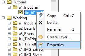 ArcCatalog TIN File